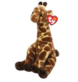 Gavin, the Giraffe