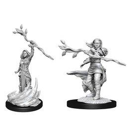WizKids Human Druid Female