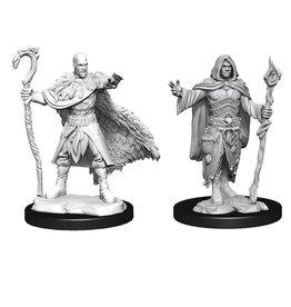 WizKids Human Druid Male