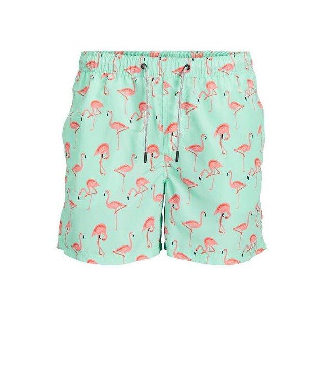 Aruba Swim Shorts Flamingo Print