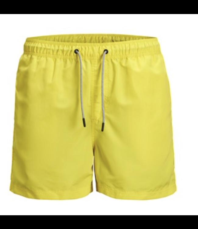 Aruba Swim Shorts