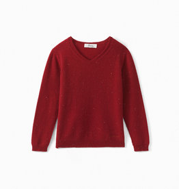Red V Neck Sweater - 4 years