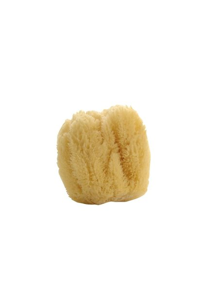 Natural Sea Sponge - Large