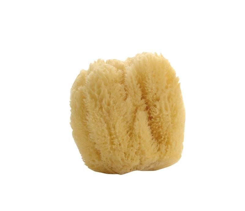 Natural Sea Sponge - Large-1