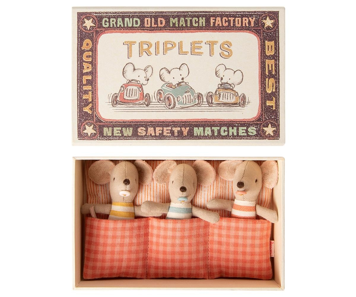 Baby Mice - Triplets in Matchbox-1