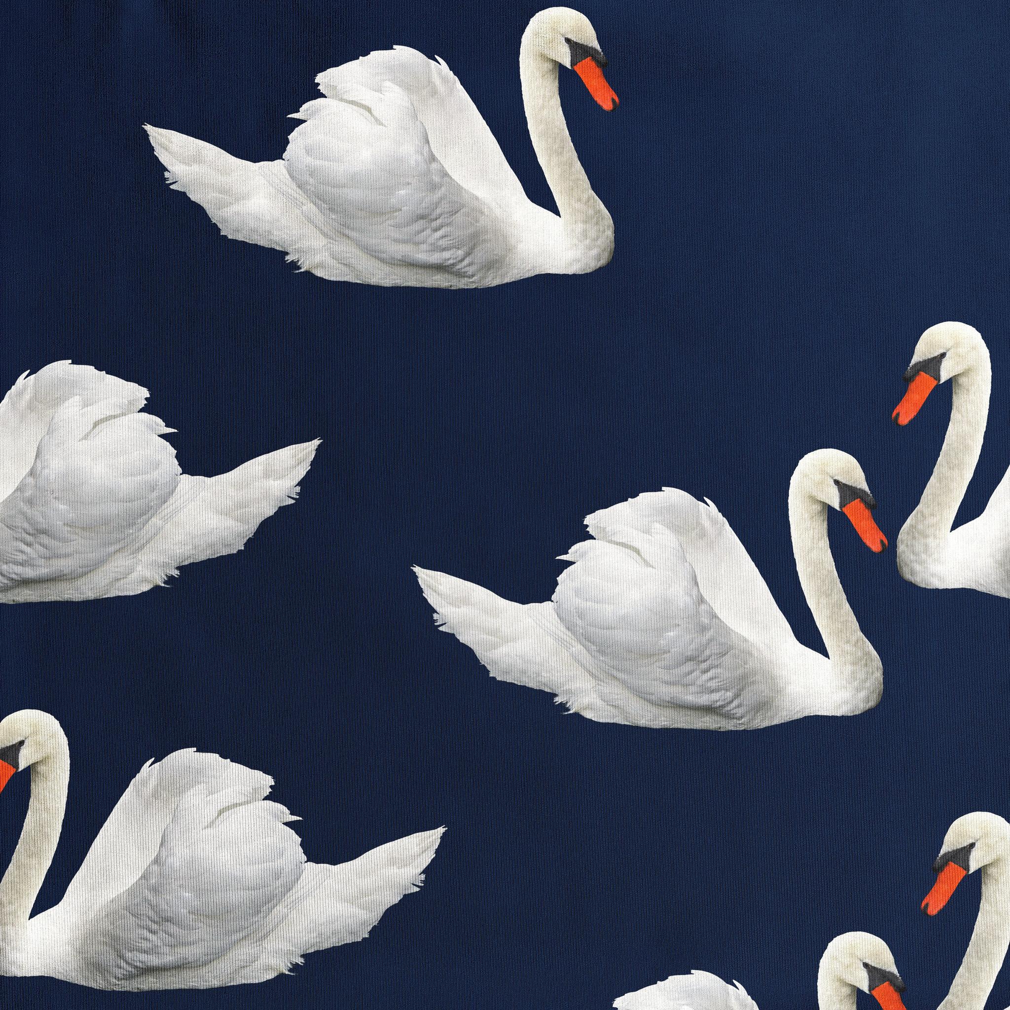 Swan Lake - Infant Playsuit-2