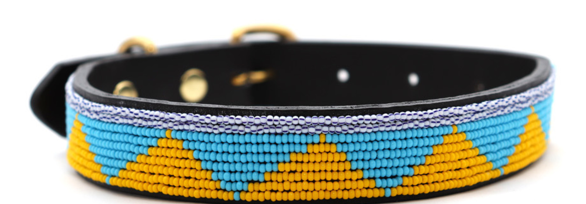 Pet Collar Spring Yellow/Blue Medium