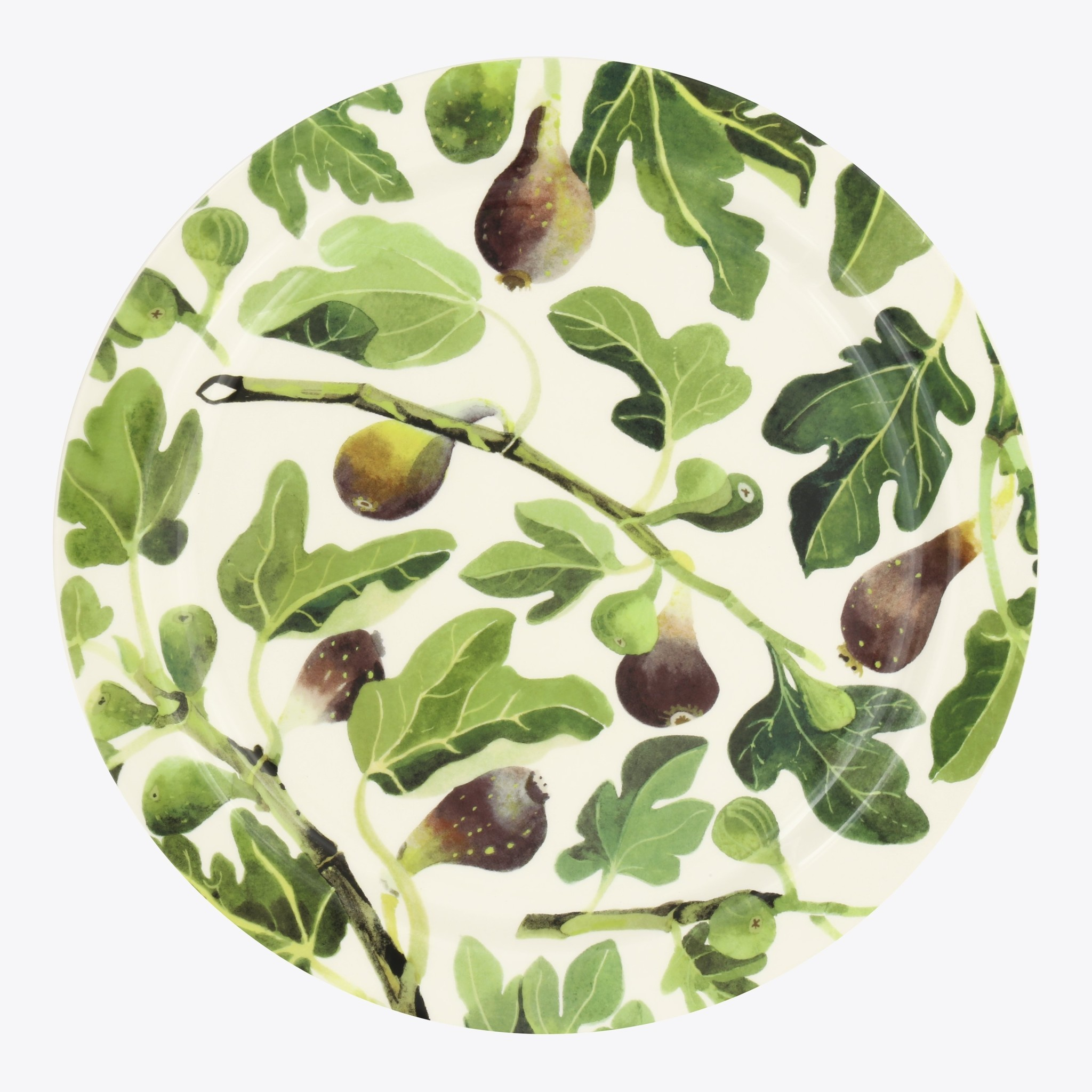 Plate - Figs-1