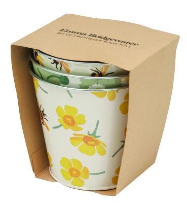 Plant Pots - Buttercup - Tin-1