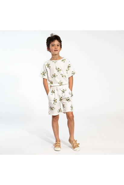 T-shirt + Short Set - Dragons - Sz.  9/10 yrs.