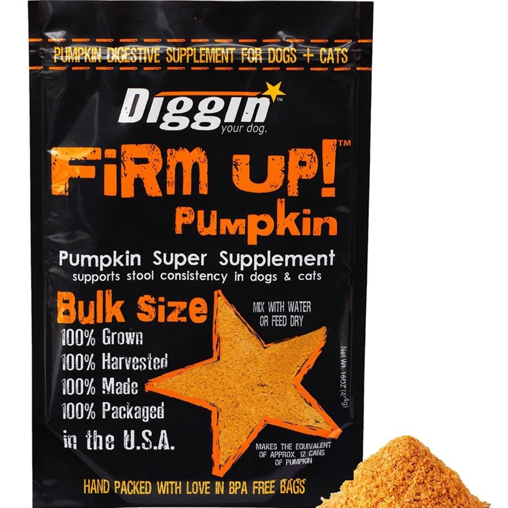 Diggin' / Super Snouts Super Snouts Diggin Firm Up Pumpkin 1 OZ