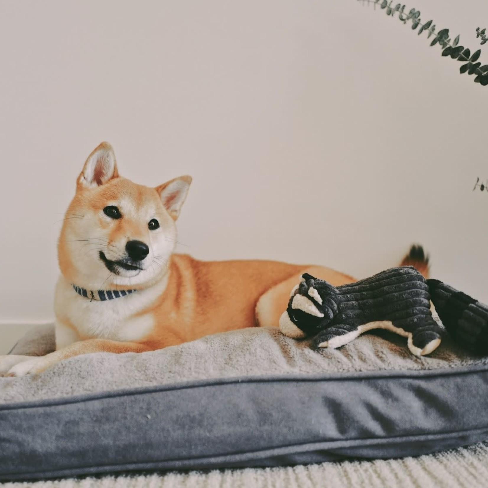Tall Tails Tall Tails Cushion Bed Charcoal Medium