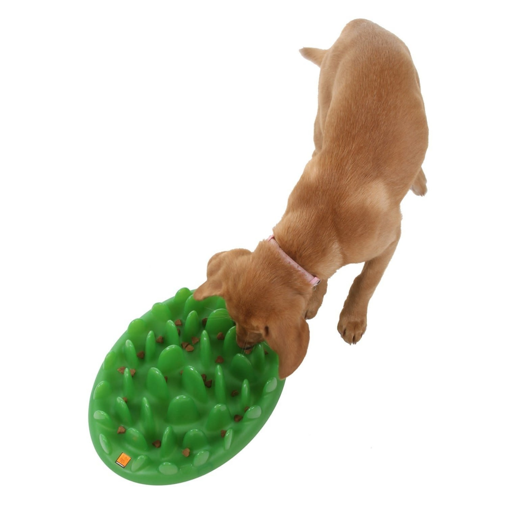 Company of Animals The Company Of Animals Interactive Dog Feeder Green Standard