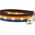 Six Point Pet Six Point Pet Chicago Flag Rainbow Lead Small