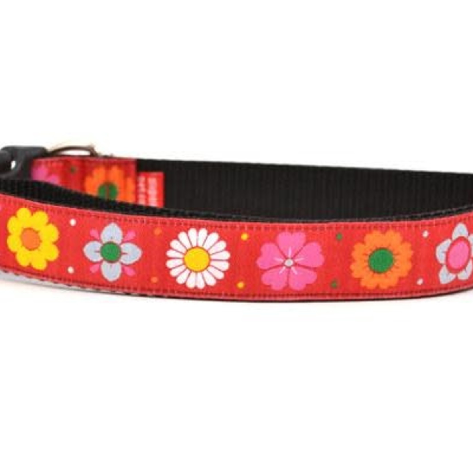 Six Point Pet Six Point Pet Daisy Chain Collar Red Medium