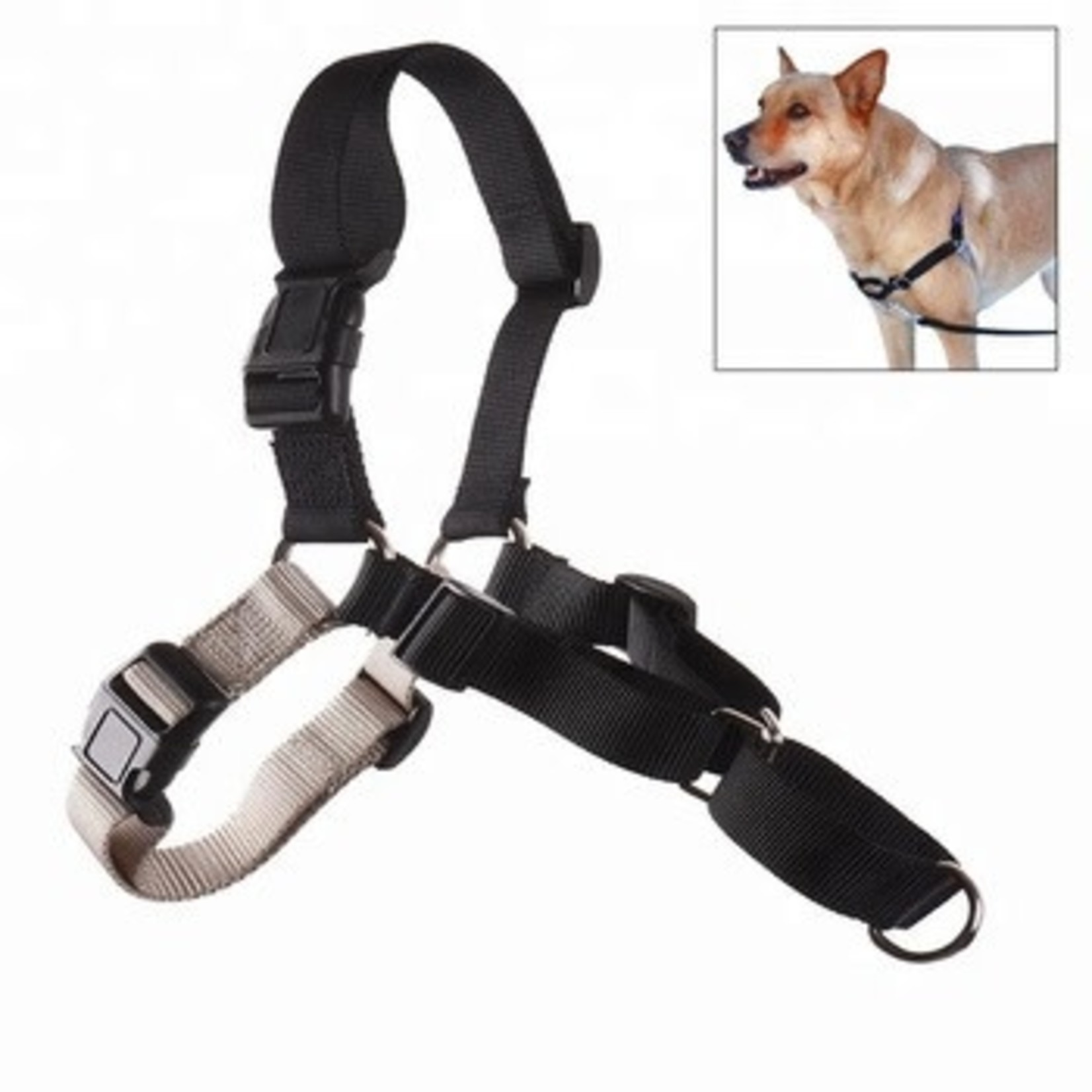 Pet Safe / Radio Systems Corp. Easy Walk Harness Black Medium/Large