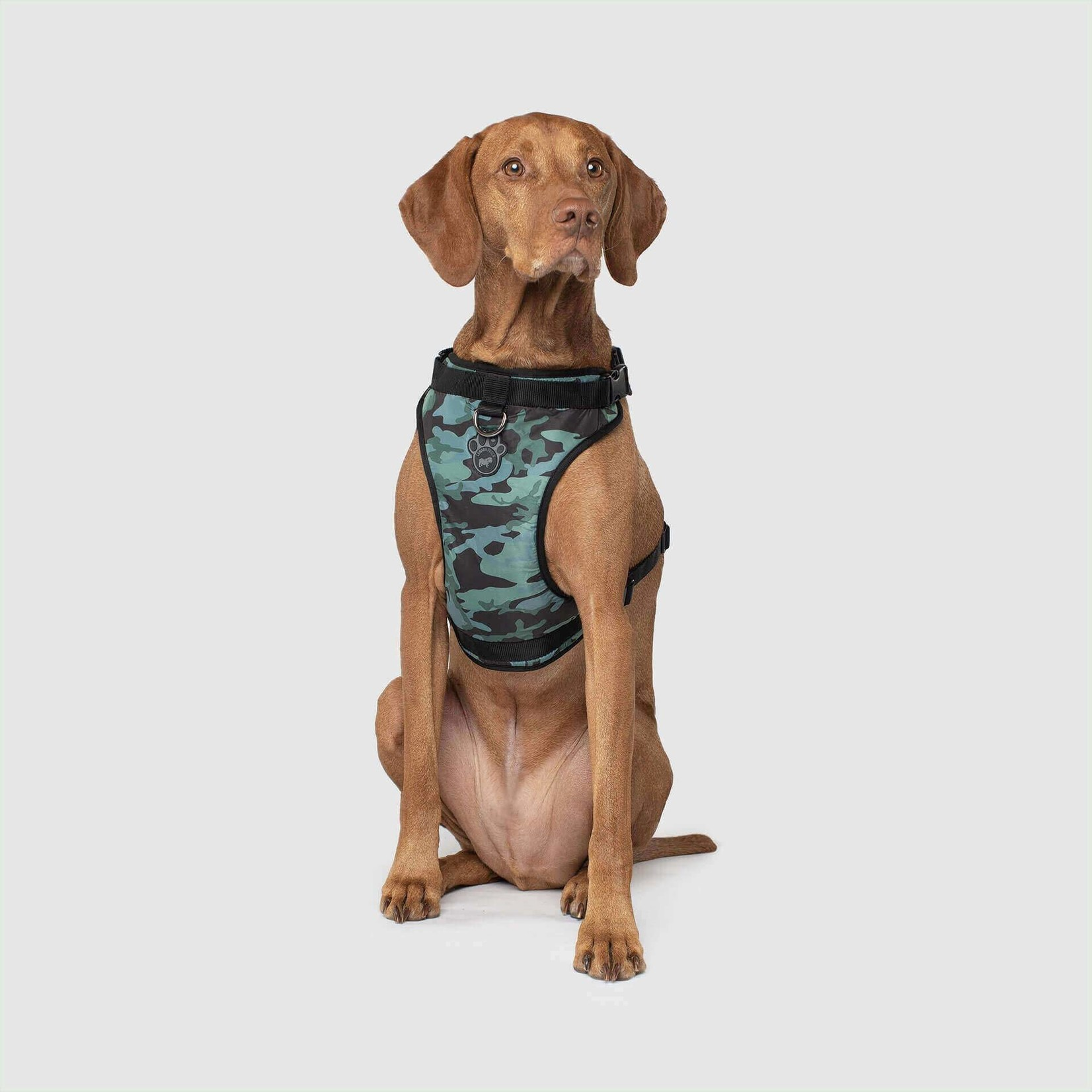 Canada Pooch Canada Pooch Everything Harness Camo X-Large