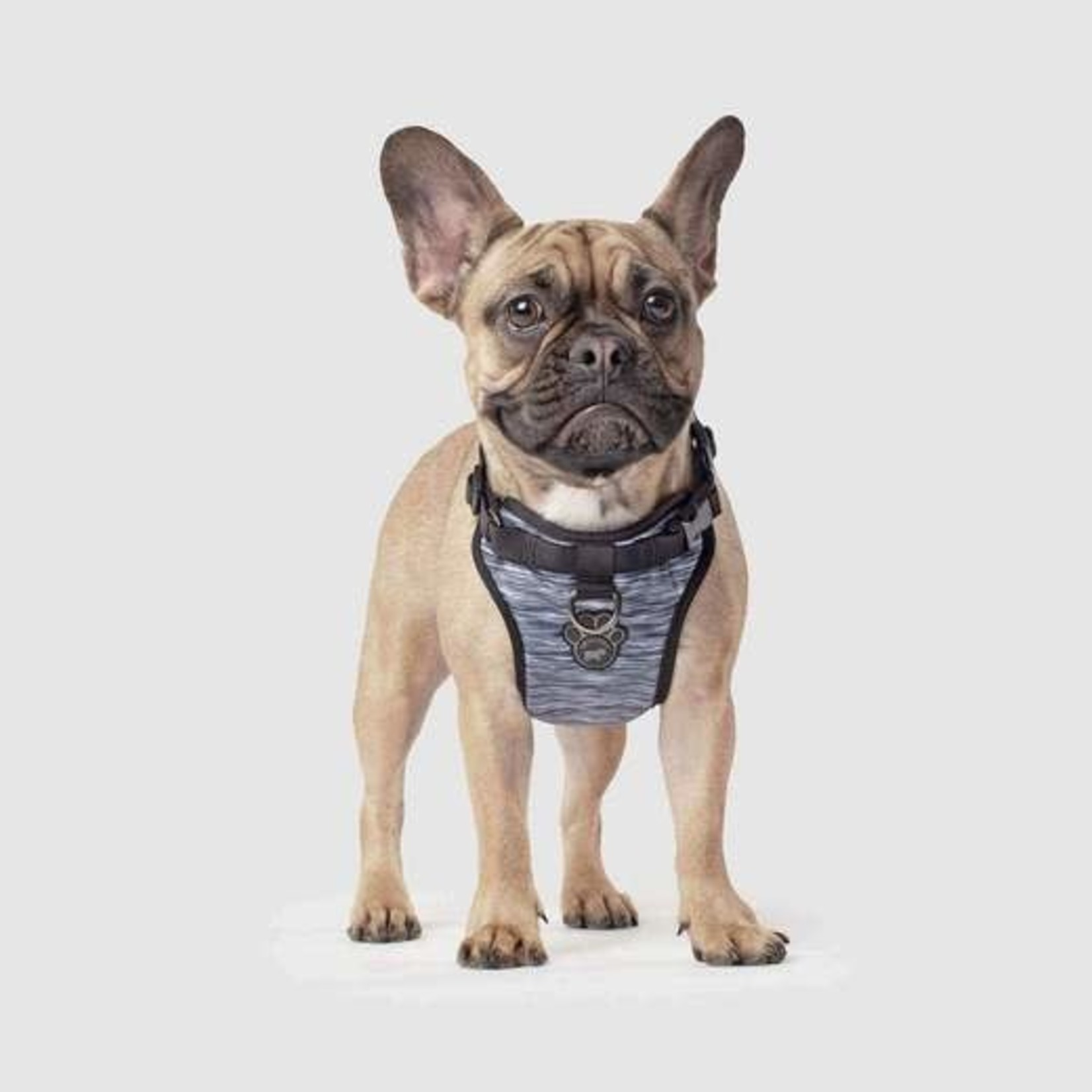Canada Pooch Canada Pooch Everything Harness Spacedye Black & White X-Large