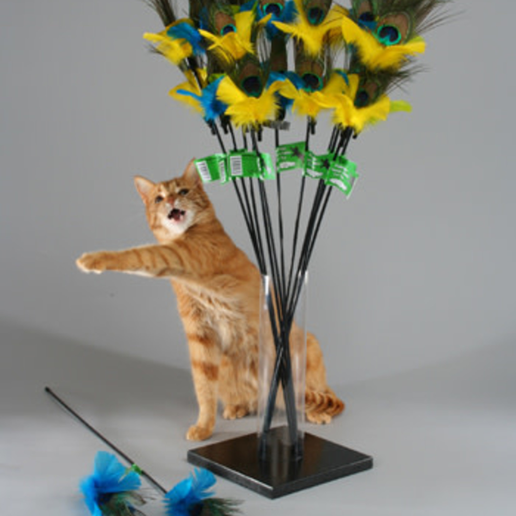 Vee Enterprises PURRfect Peacock Feather Cat Wand Toy