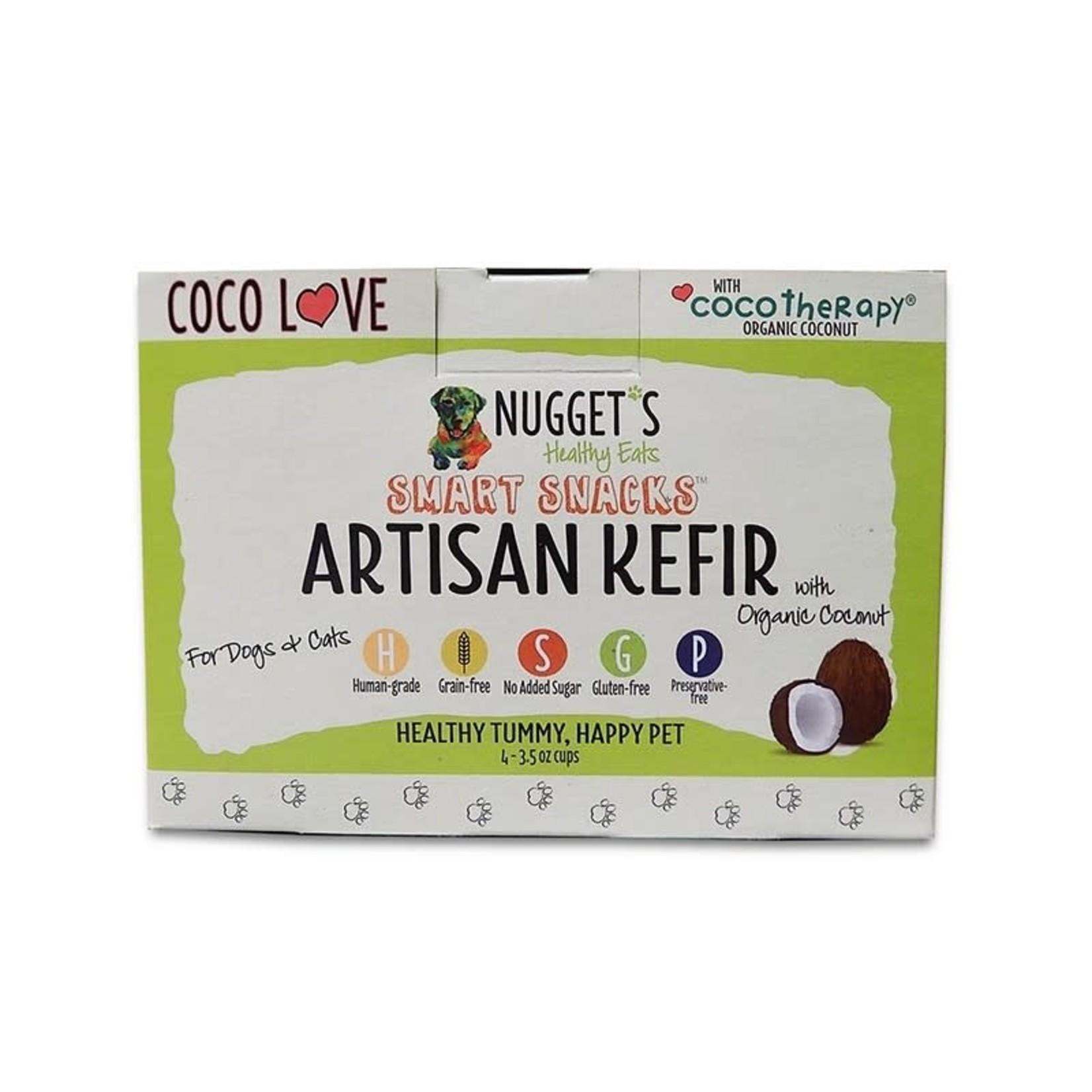 Nugget's Healthy Eats Nugget's Healthy Eats FZ Coco Love Coconut Kefir 4 Pack