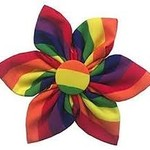 Huxley & Kent Pinwheel Rainbow Small