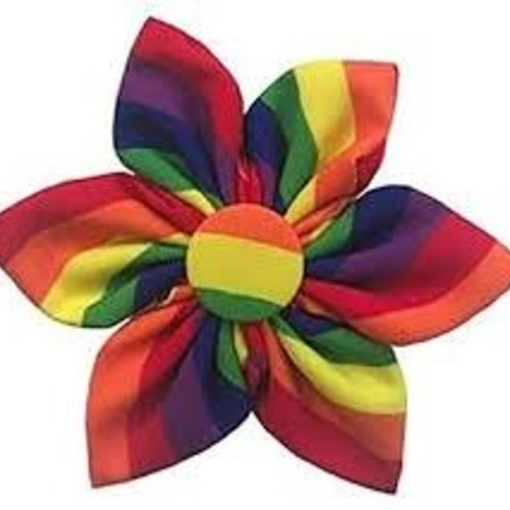 Huxley & Kent Huxley & Kent Pinwheel Rainbow Small