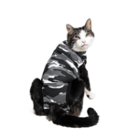 Suitical Happy Recovery Suitical Cat Recovery Suit X-Small