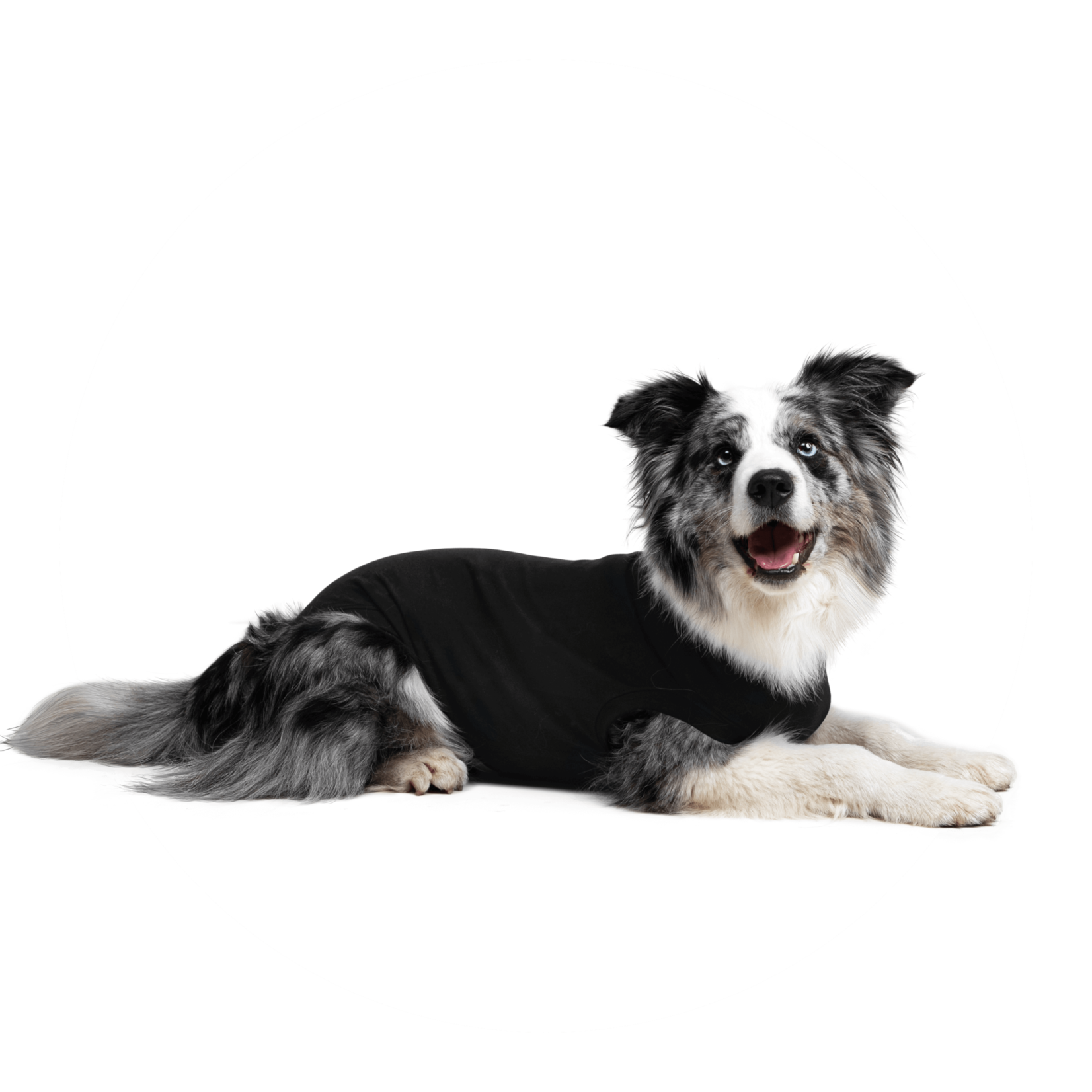Suitical Happy Recovery Suitical Dog Recovery Suit Small