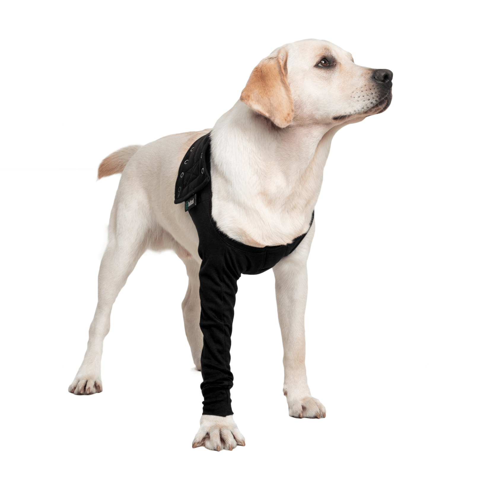 Suitical Happy Recovery Suitical Dog Recovery Sleeve Small