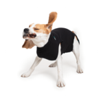 Suitical Happy Recovery Suitical Dog Recovery Suit Medium