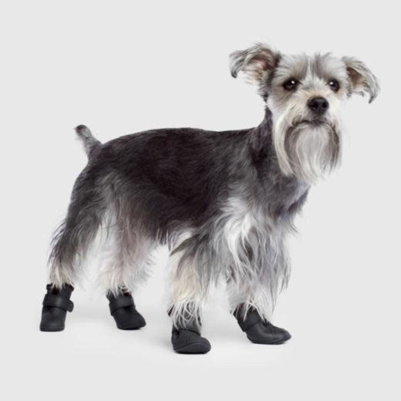 Canada Pooch Canada Pooch Lined Wellies Black Large
