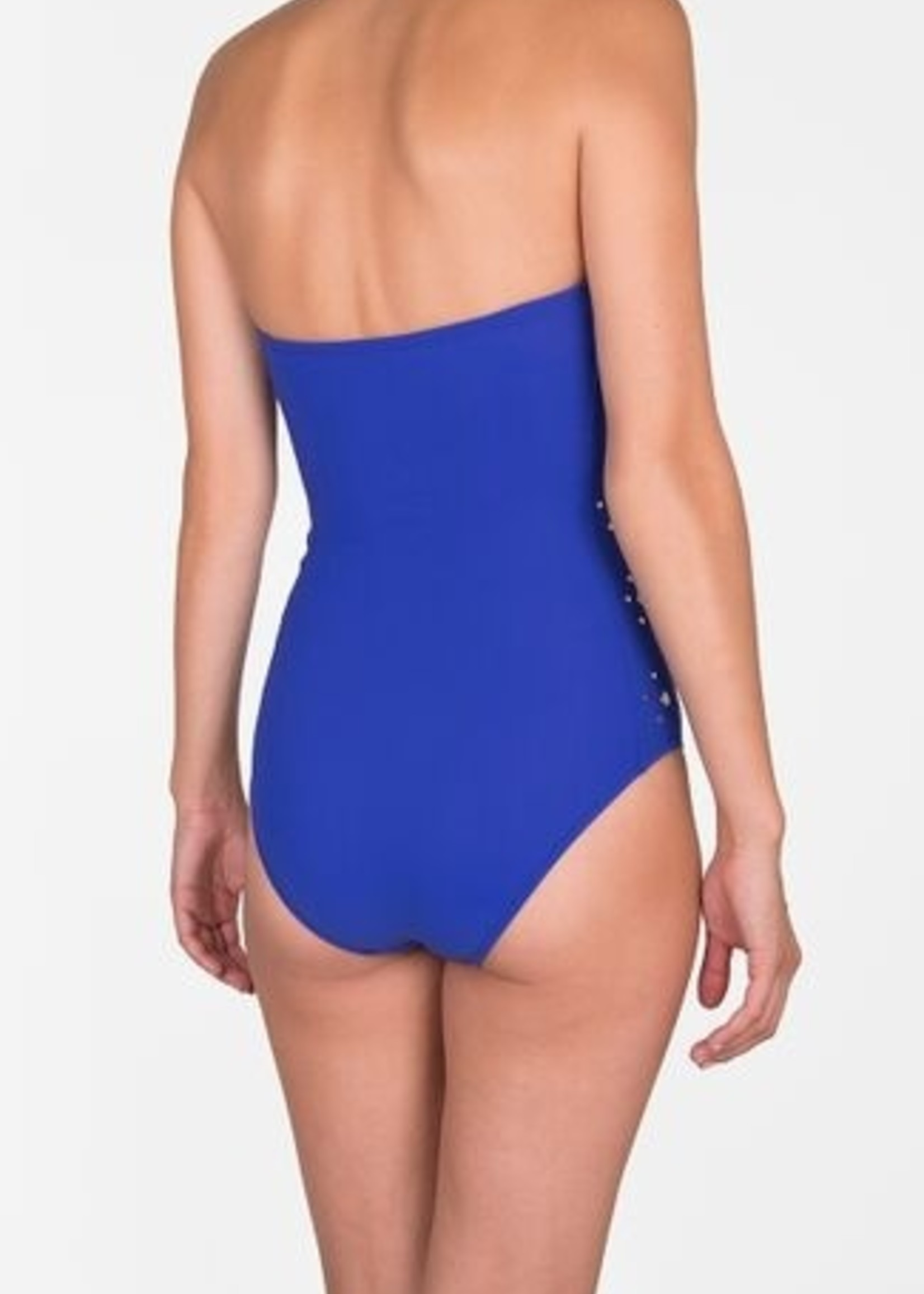 Shan So Sexy Bandeau Swimsuit