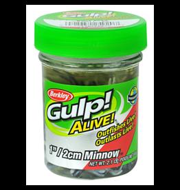 """Berkley Gulp Alive 1"""" minnow"""