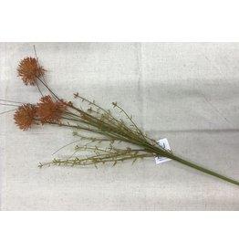 """Audrey's Branch - Rust Allium 23"""""""