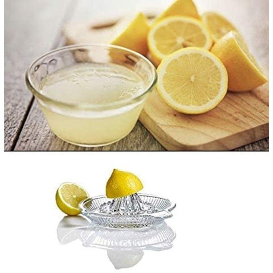 Trudeau Glass Citrus Juicer