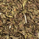 Pluck Pluck Tea, Harvest Mint