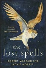 Books the lost spells by Robert MacFarlane and Jackie Morris   ( Holiday Catalog)