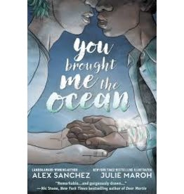 Books You Brought Me the Ocean by Alex Sanchez and Julie Maroh (Holiday Catalog)