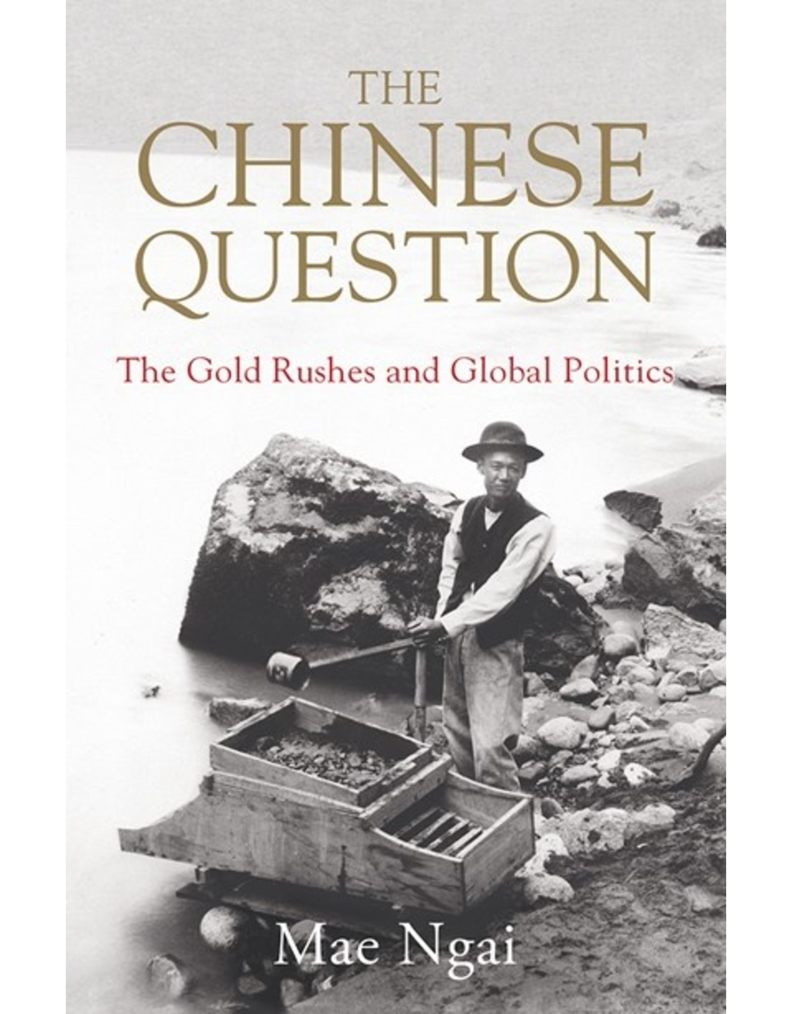 Books The Chinese Question: The Gold Rushes and Global Politics by Mae Ngai