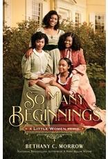 Books So Many Beginnings: A Little Women Remix