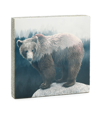 Cedar Mountain Art Block - Forest Bear