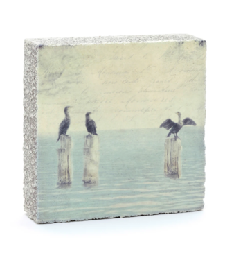 Cedar Mountain Art Block - Cormorants
