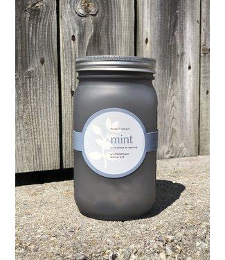 Modern Sprout Herb Garden - Mint