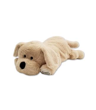 Warm Buddy Labrador Puppy