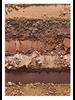 Bare Minerals Latte Eyeshadow Palette