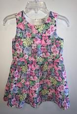 Carter's Girls/2T/Carters/Dress