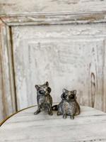 Salt & Pepper Set - Raccoon