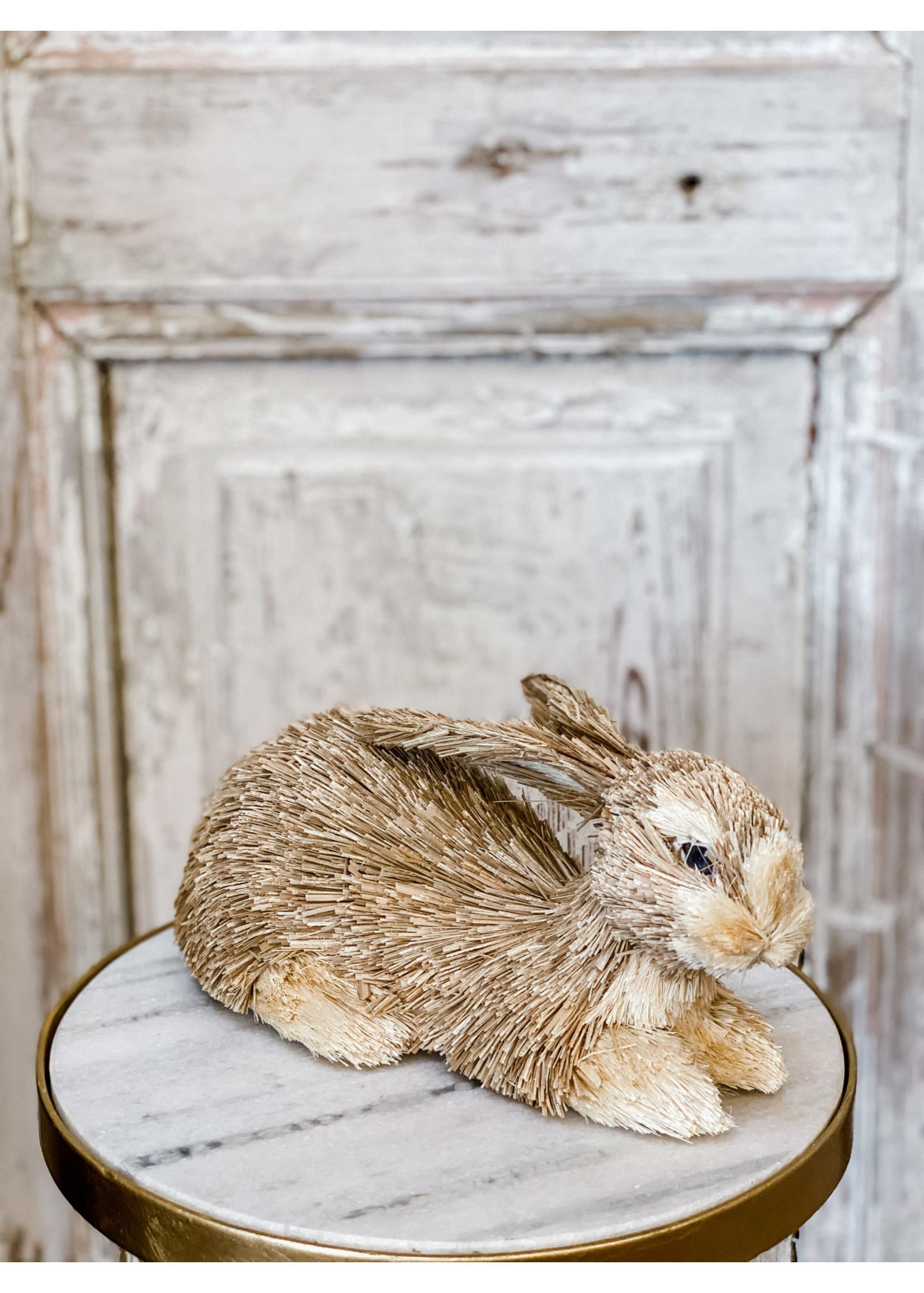 Rabbit Laying