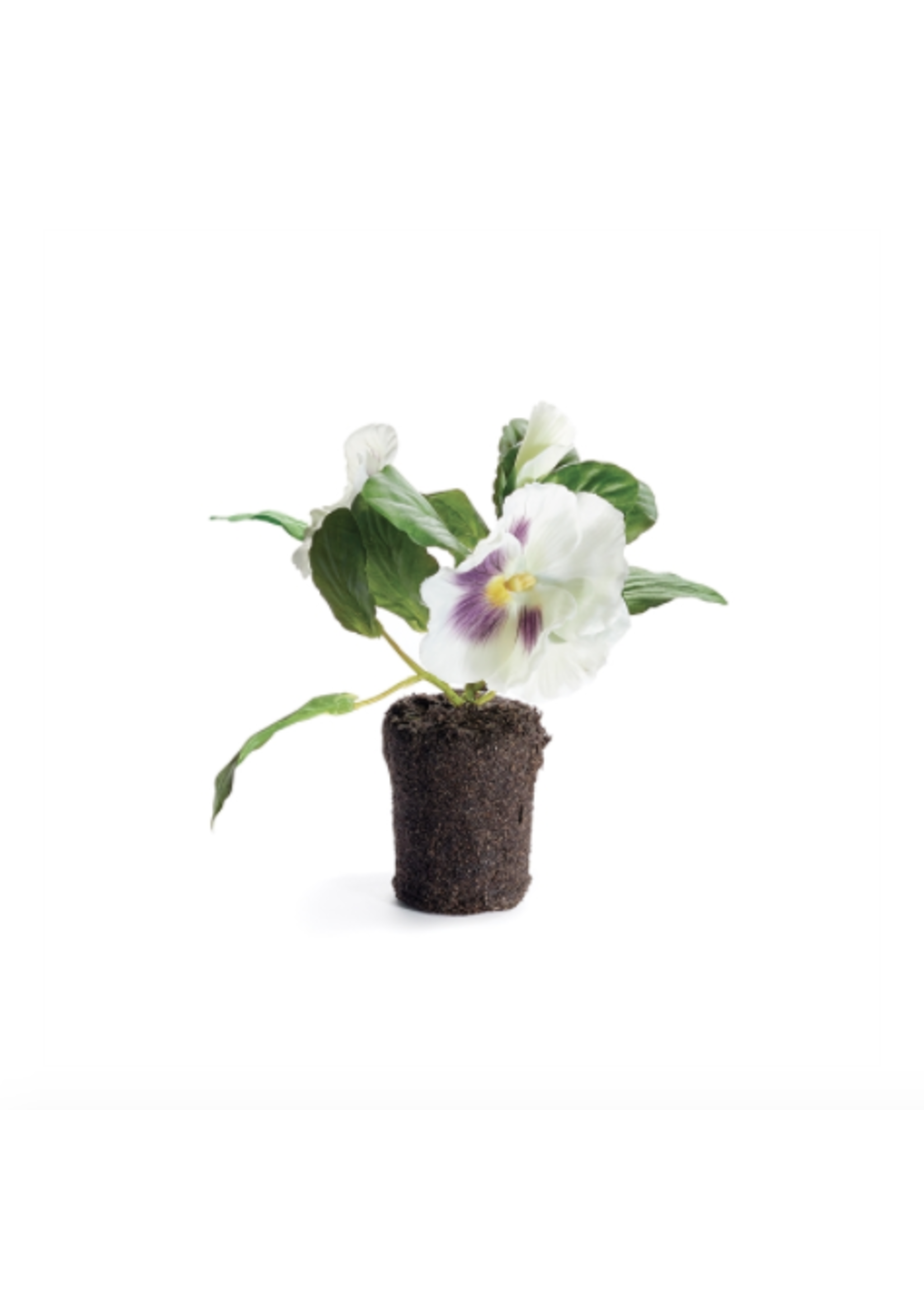 Pansy Drop-In - White