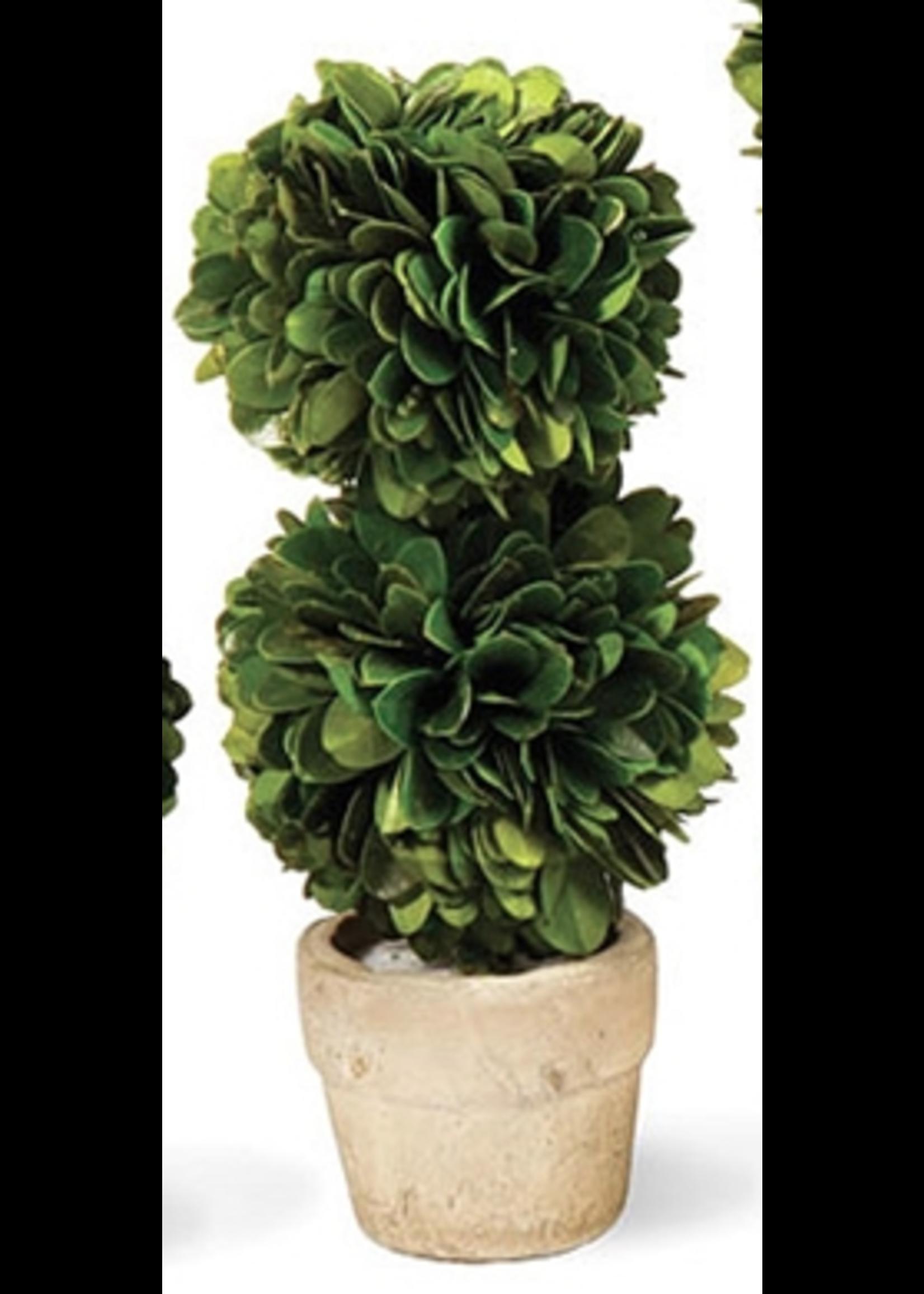 Boxwood Topiary Mini - Tree Double